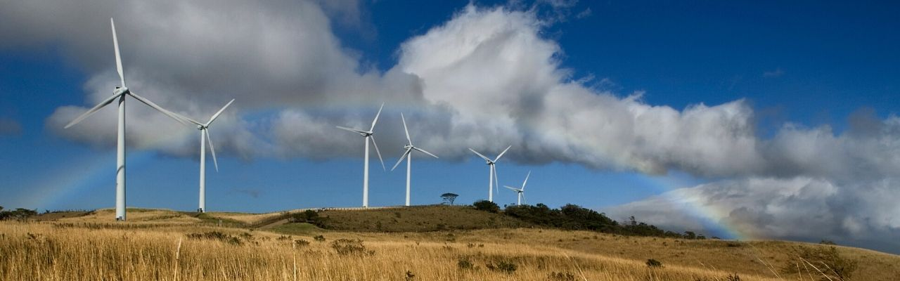 What's Shaking in the Scaleup Landscape-green-energy