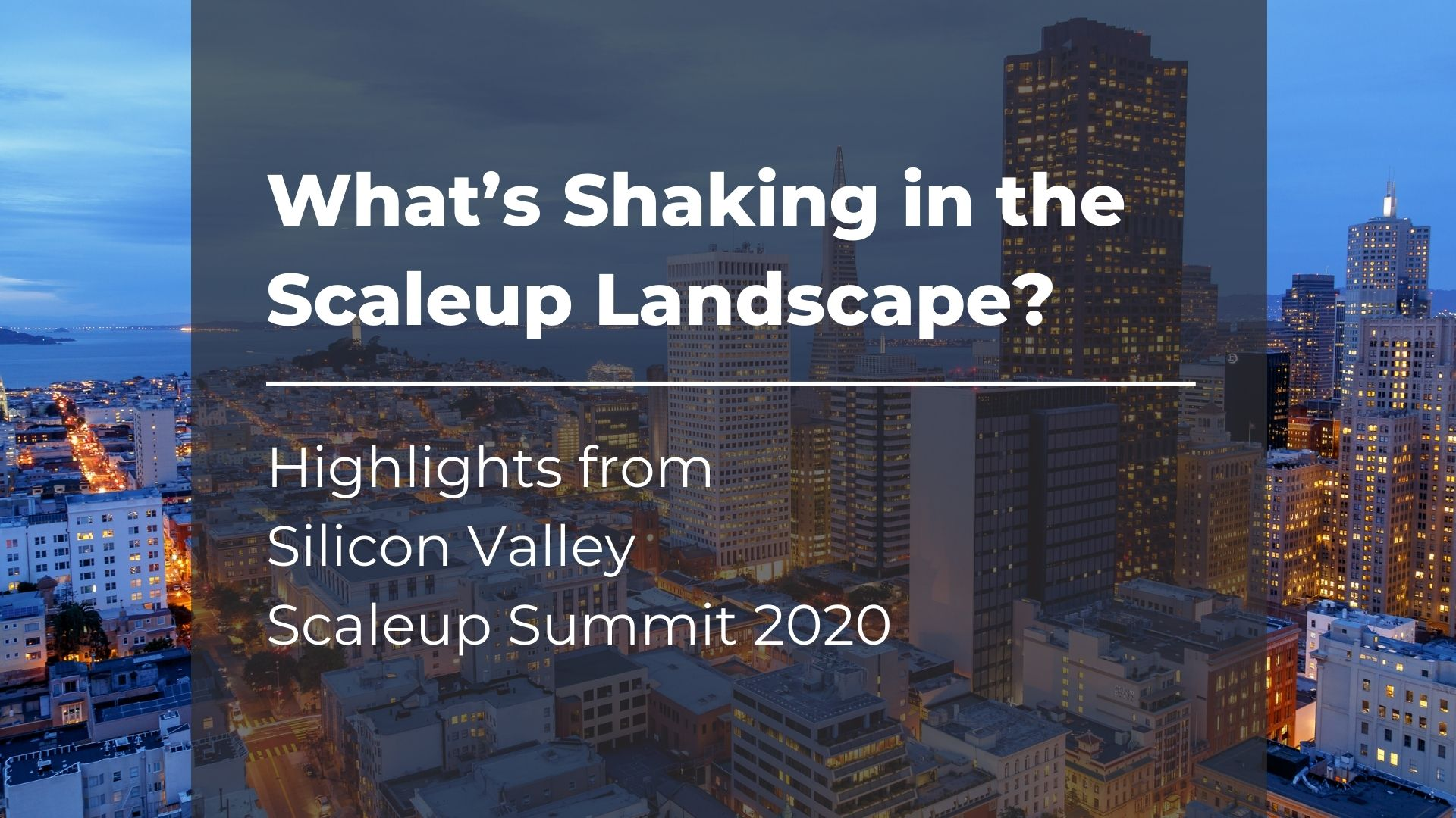 Silicon-Valley-Scaleup Landscape_cover