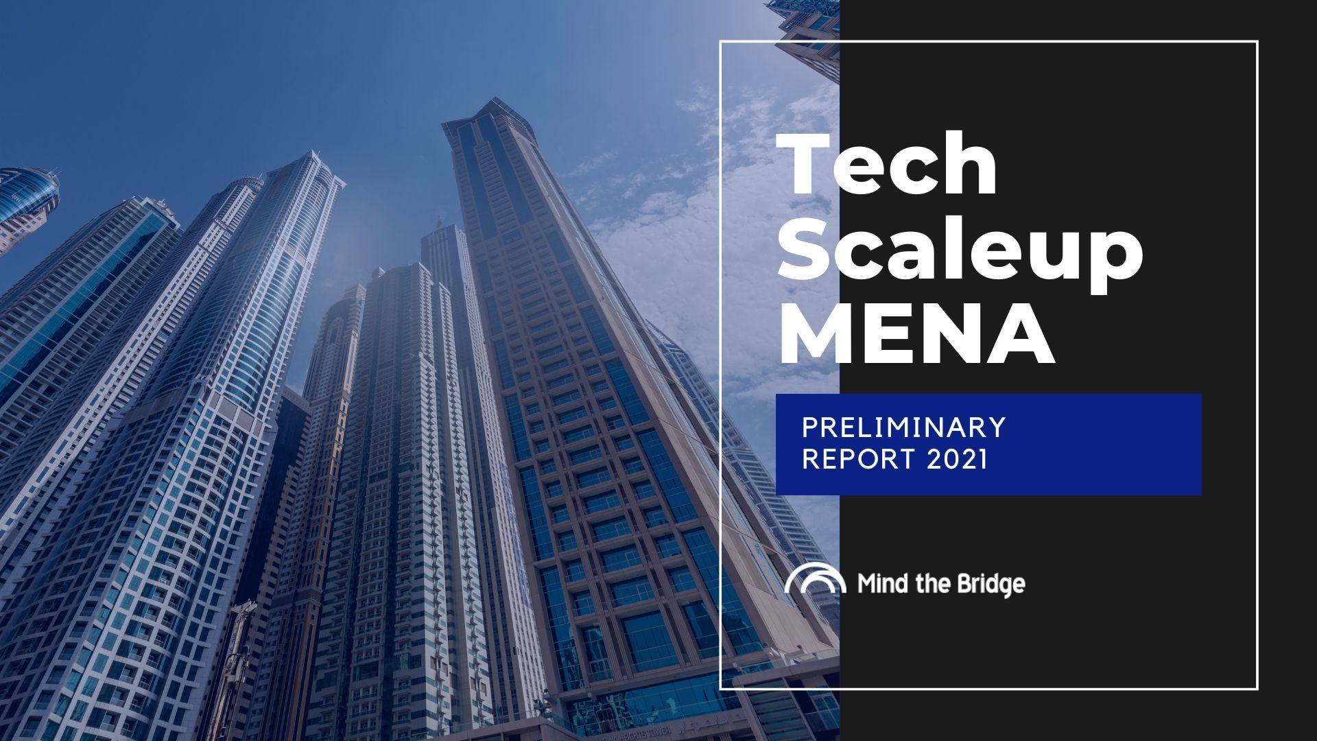 Tech-Scaleup-MENA-Report