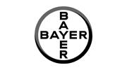 bayer summit partner